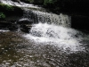 ricketts-glen-waterfalls-8